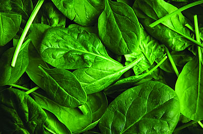 Spinach. Spinach is rich in magnesium, a mineral that can help you beat addiction and withdrawal.