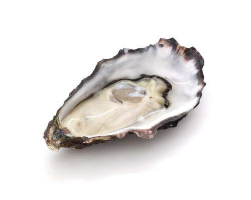 Oysters. The zinc in oysters help regenerate myelin.