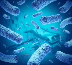 Blue bacteria. Bacteria can influence our anxiety levels.