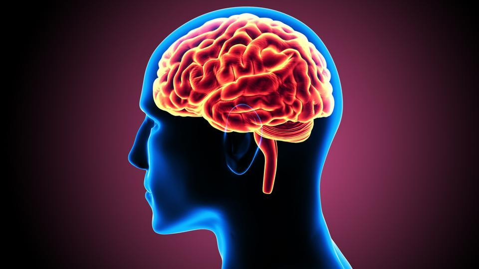 An illustration of a person's head, their brain, and blood flowing through the brain.
