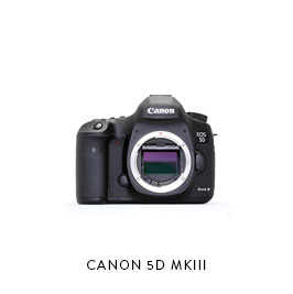 CANON 5D MK III  (3) Canon LPE6 Batteries (2) 32GB CF cards Dual Charger, Card Reader