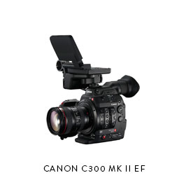CANON C300 MK II EF  (3) Batteries, Dual Charger (2) 128gb CFast cards, CFast Reader ET Micron 15mm baseplate Movcam Top Handle