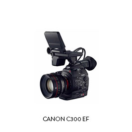 CANON C300 EF  (4) Batteries, Dual Charger (2) 32gb CF cards, CF Reader ET Micron 15mm baseplate Movcam Top Handle