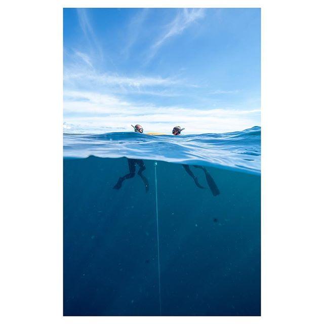 Breath up | calm down.  #freedive #apneatraining w/ @onebreathlembongan 📸 @agustinelejalde
