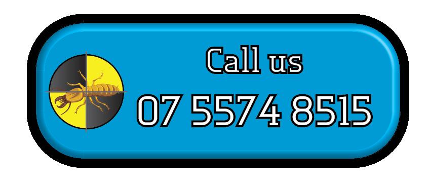 Gold Coast Pest Services Call Us