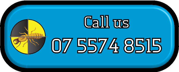 Call Gold Coast Pest Services