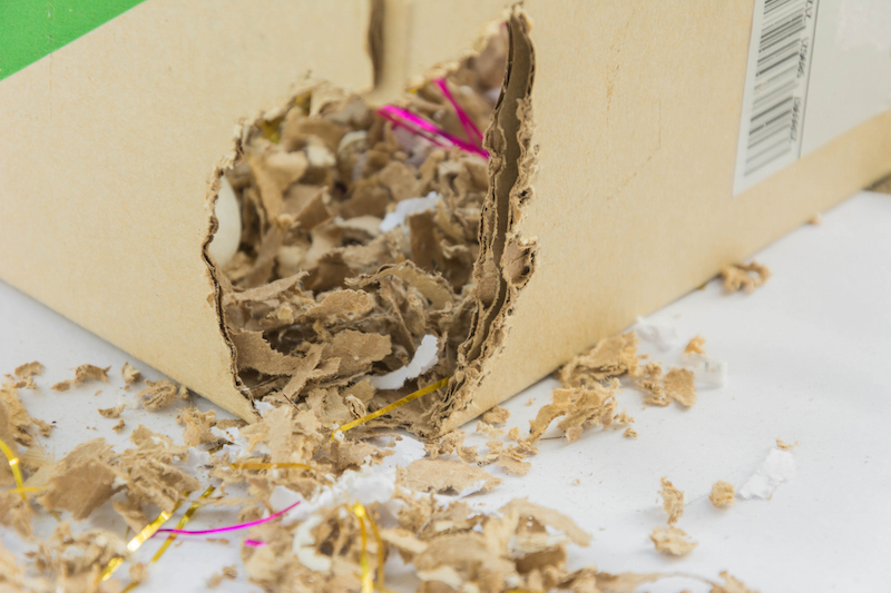 gnawed boxes, containers and wires are a sure sign of rodent presence