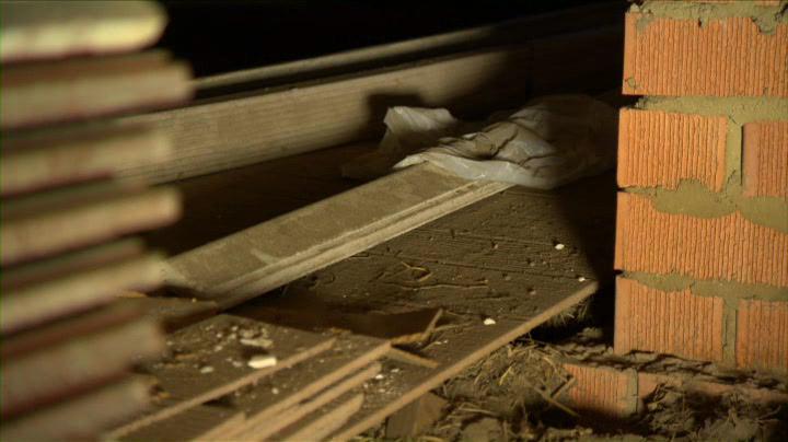 Stored goods make termites hard to spot