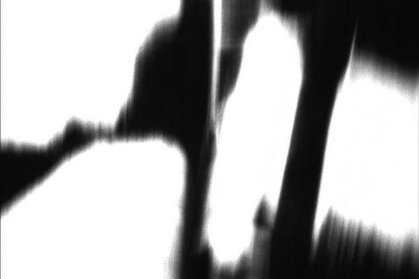 sf_hitch_07.jpg