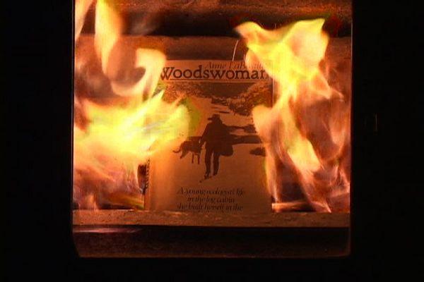 woodwoman_still_lg.jpg