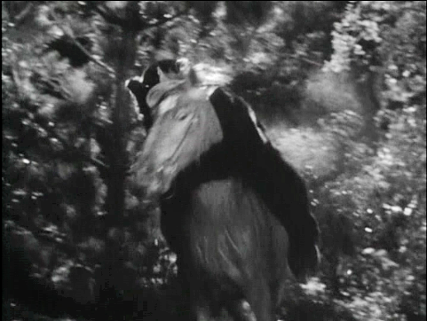bear_back_riding_blowup_copy5_lg.png