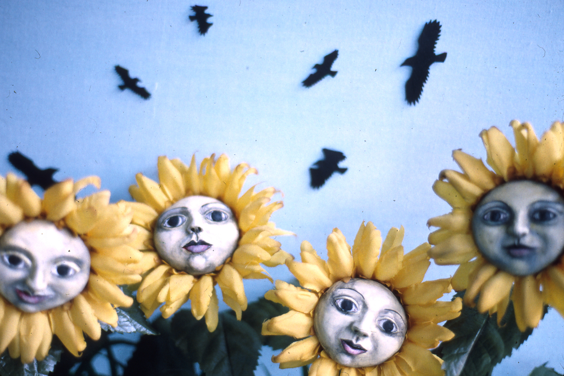 bs_sunflowers4x6_blowup.jpg