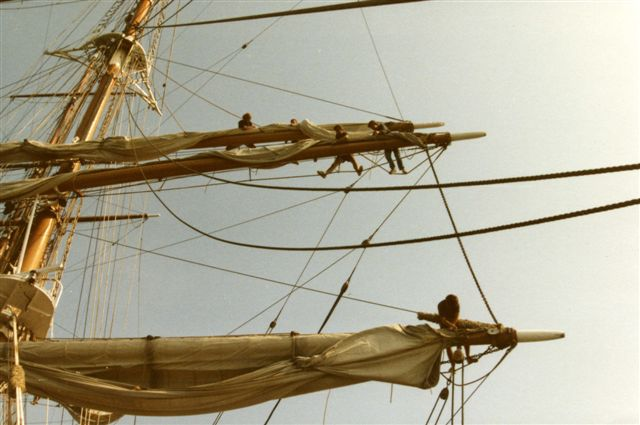 SEA CLOUD - crew working in the rigging