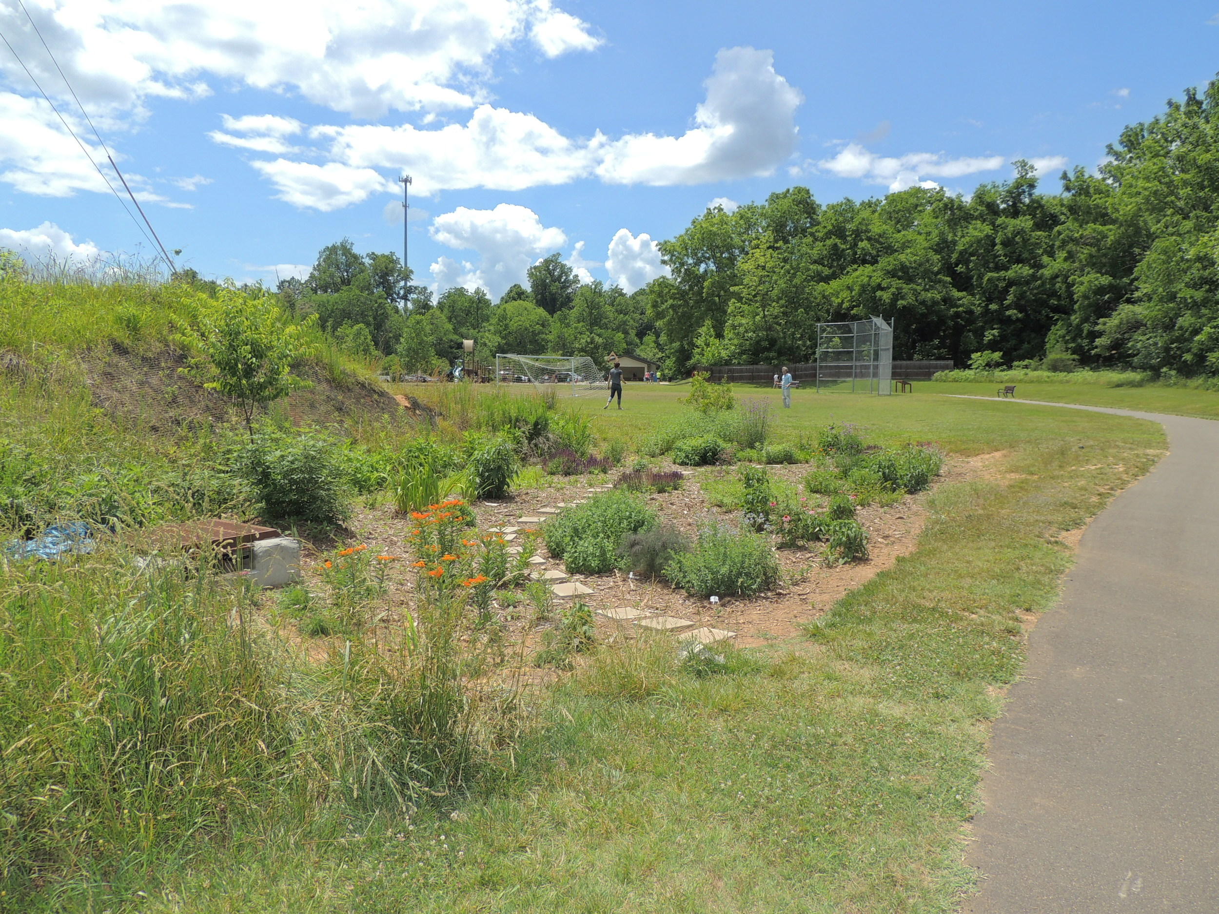 Bioretention garden at Gold Park in Hillsborough, NC