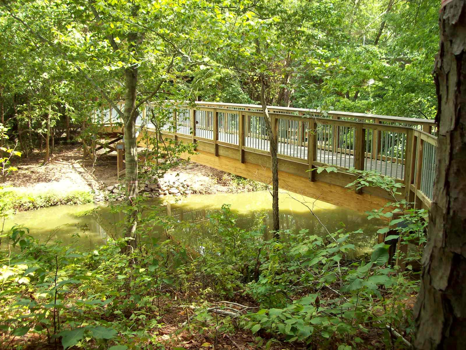 Black Creek Ped Bridge (1).JPG