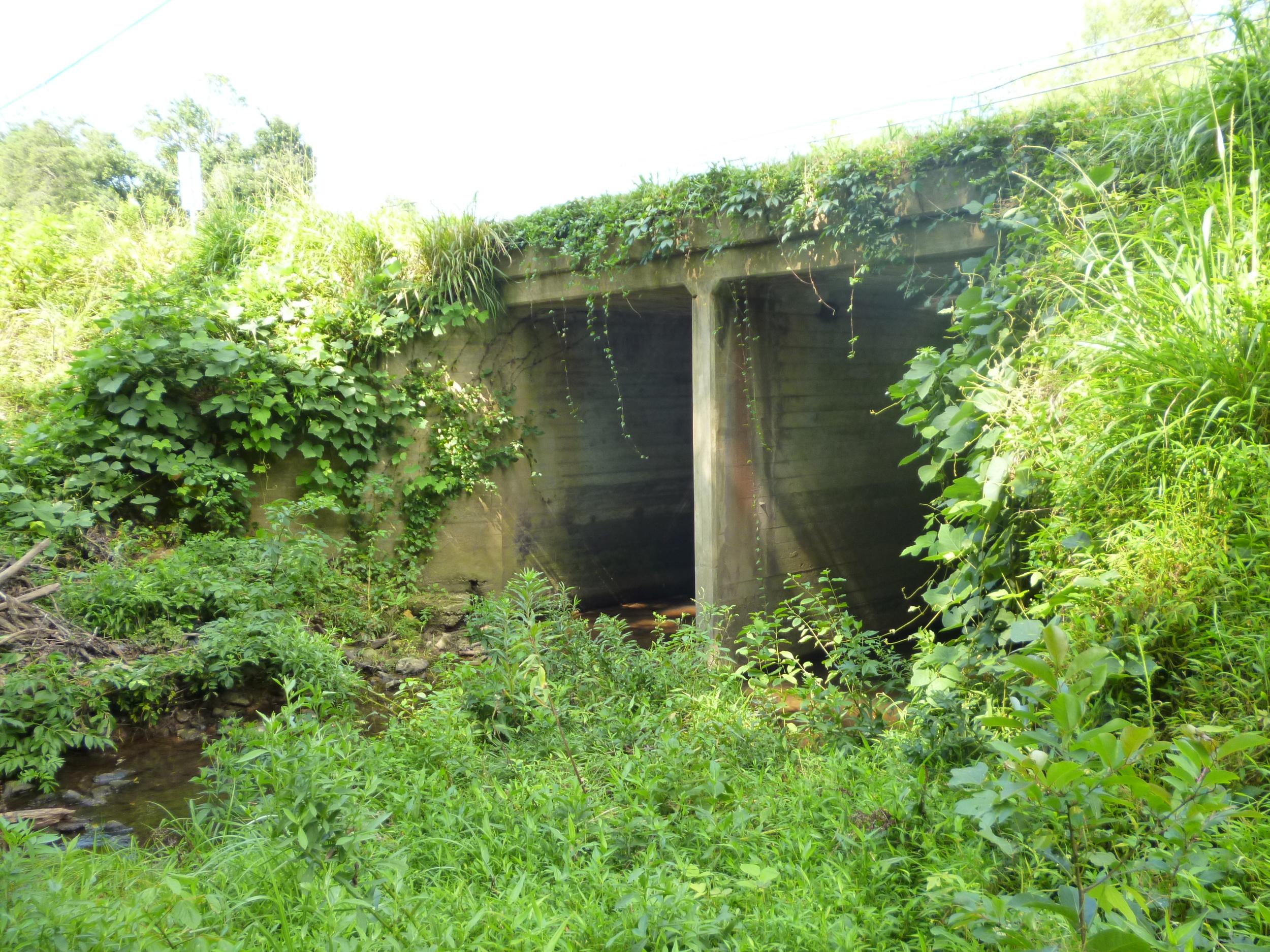 Reinforced concrete box culvert downstream of Bridge 00207