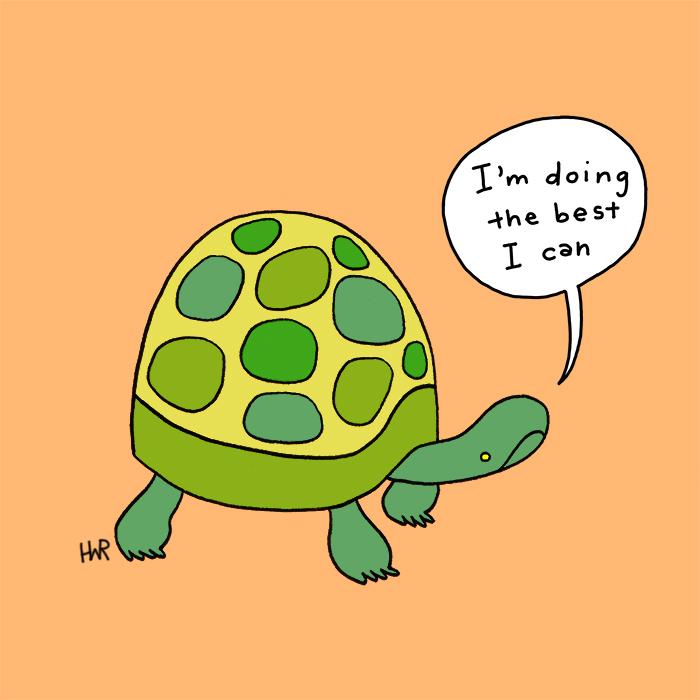 anxiousanimal_turtle.jpg