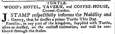 turtle_excerpt.jpg