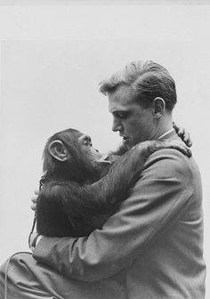@bccpictures /Sir David Attenborough with Jane the chimpanzee in Sierra Leone