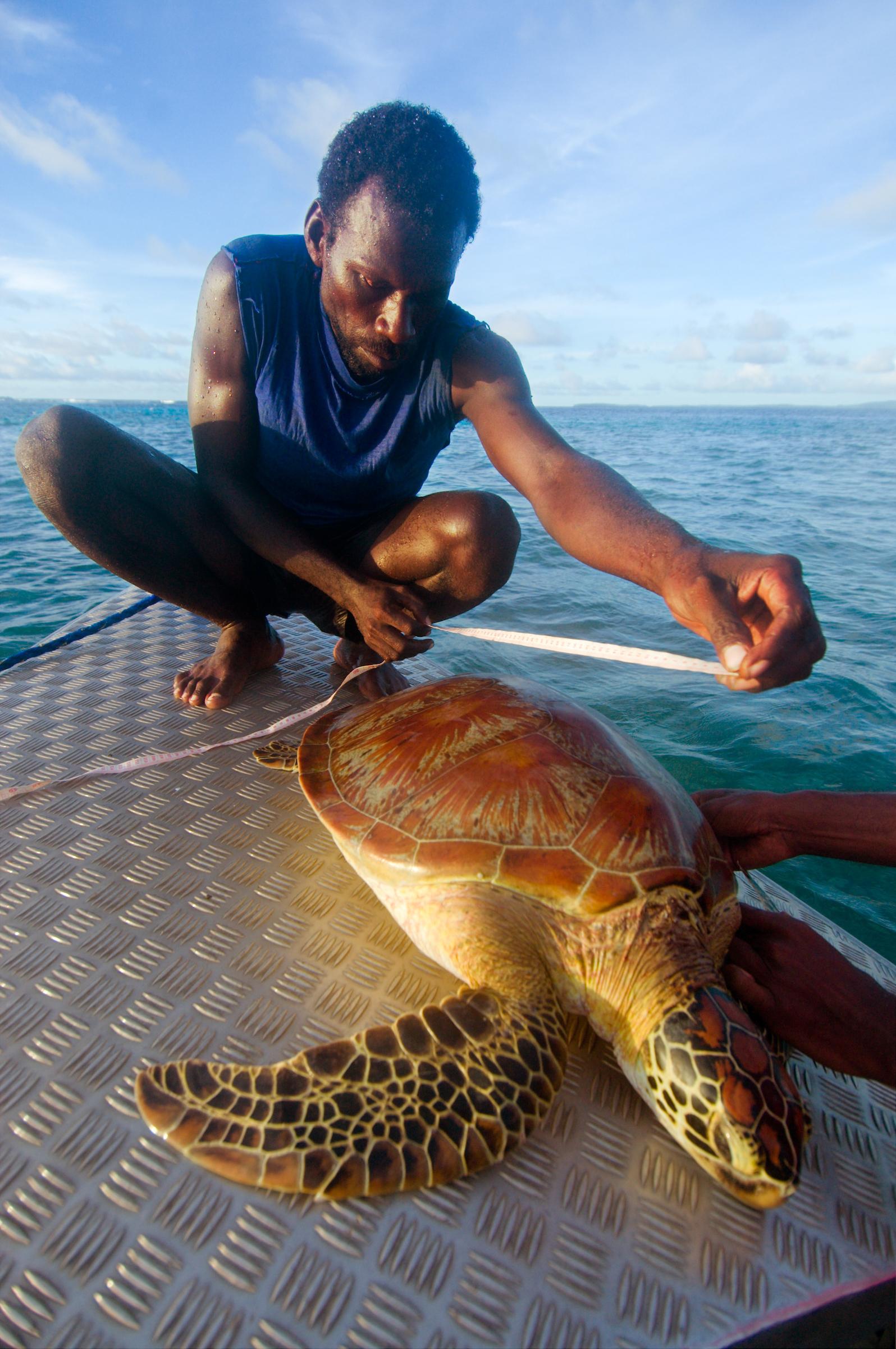 Arnavon_Islands_Solomons_055.jpg