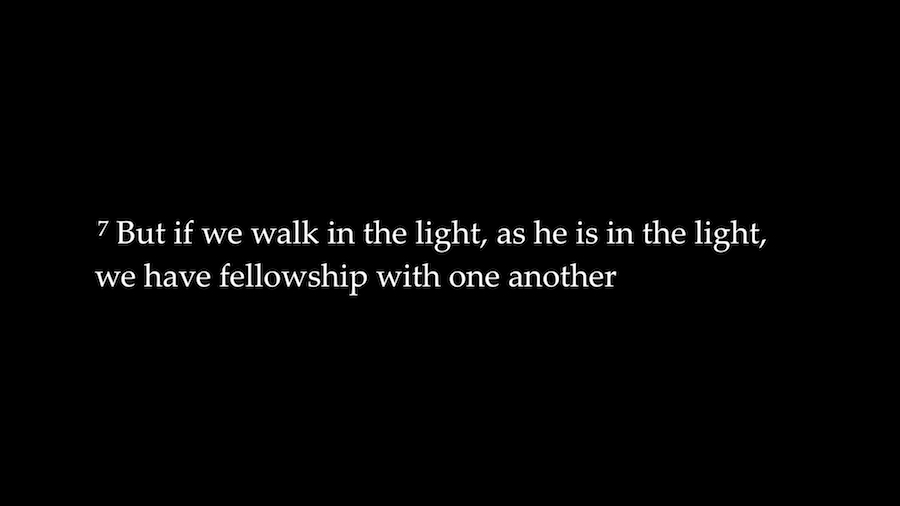 EEF Walk in the Light.028.jpeg
