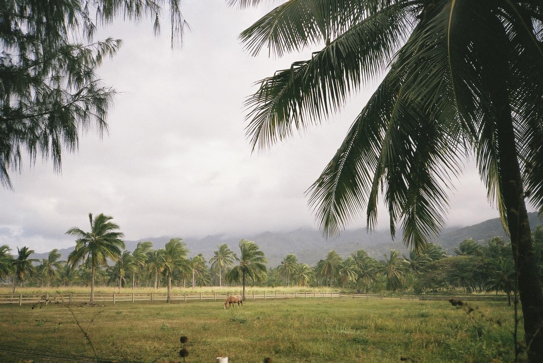hawaii_f1000022.jpg