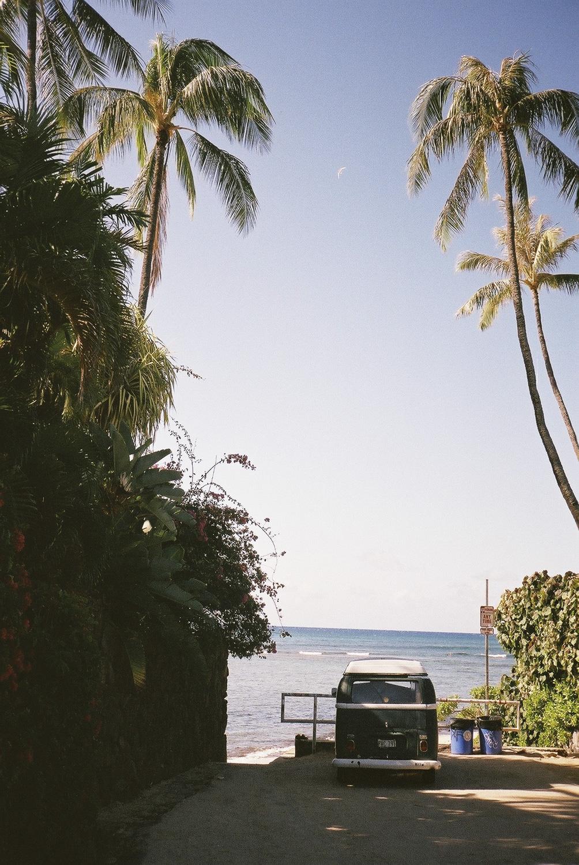 hawaii_f1000029.jpg