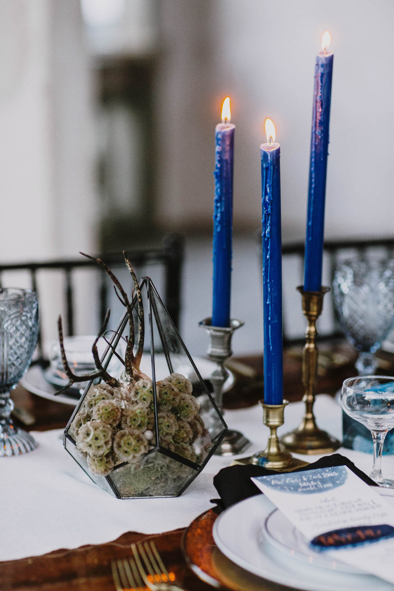 blue candles with moss in terrariums