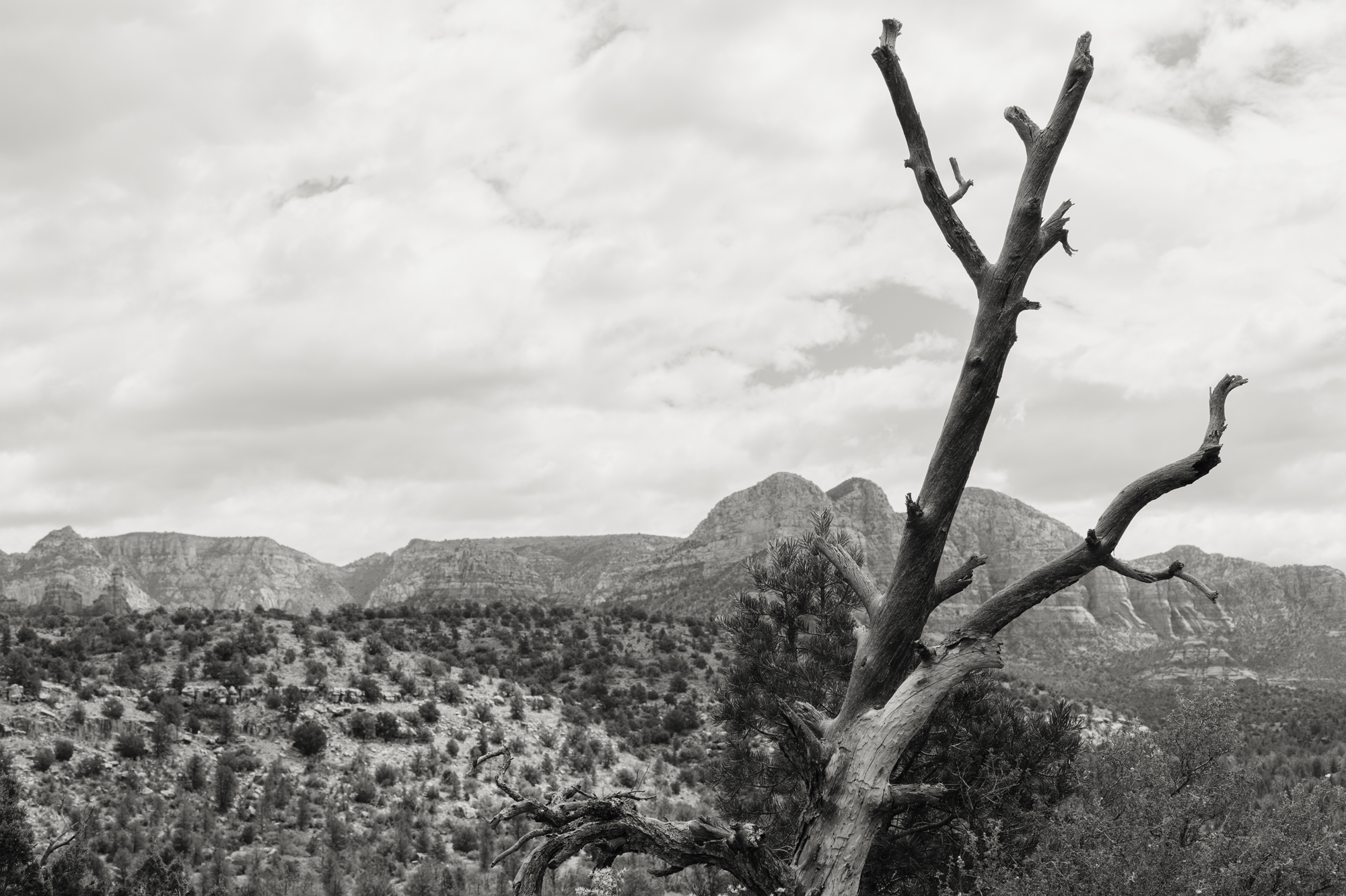 Sedona, Arizona - Memphis Photographer - Arizona Photographer - Landscape Photographer - Fine Art Photographer - K. Stoddard Photography & Fine Art 02.jpg