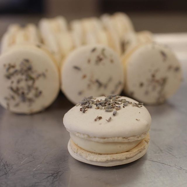 We love having @edenbakeryredding Macarons in our shop! Right now we have honey lavender and sea salt caramel flavors and they are delicious 🤤 !These tasty treats make a great bite to either complement your ice cream or a perfect bite all on their own!  Stop by the store tonight and give them a try 😍 (only available at the Market Street location) __________ • • • • • • #tasteandseecreamery#butfirstdessert#tastytreat#macarons#thisisredding#yummy#buzzfeedfood#shopsmallbusiness#reddingca#edenbakeryredding