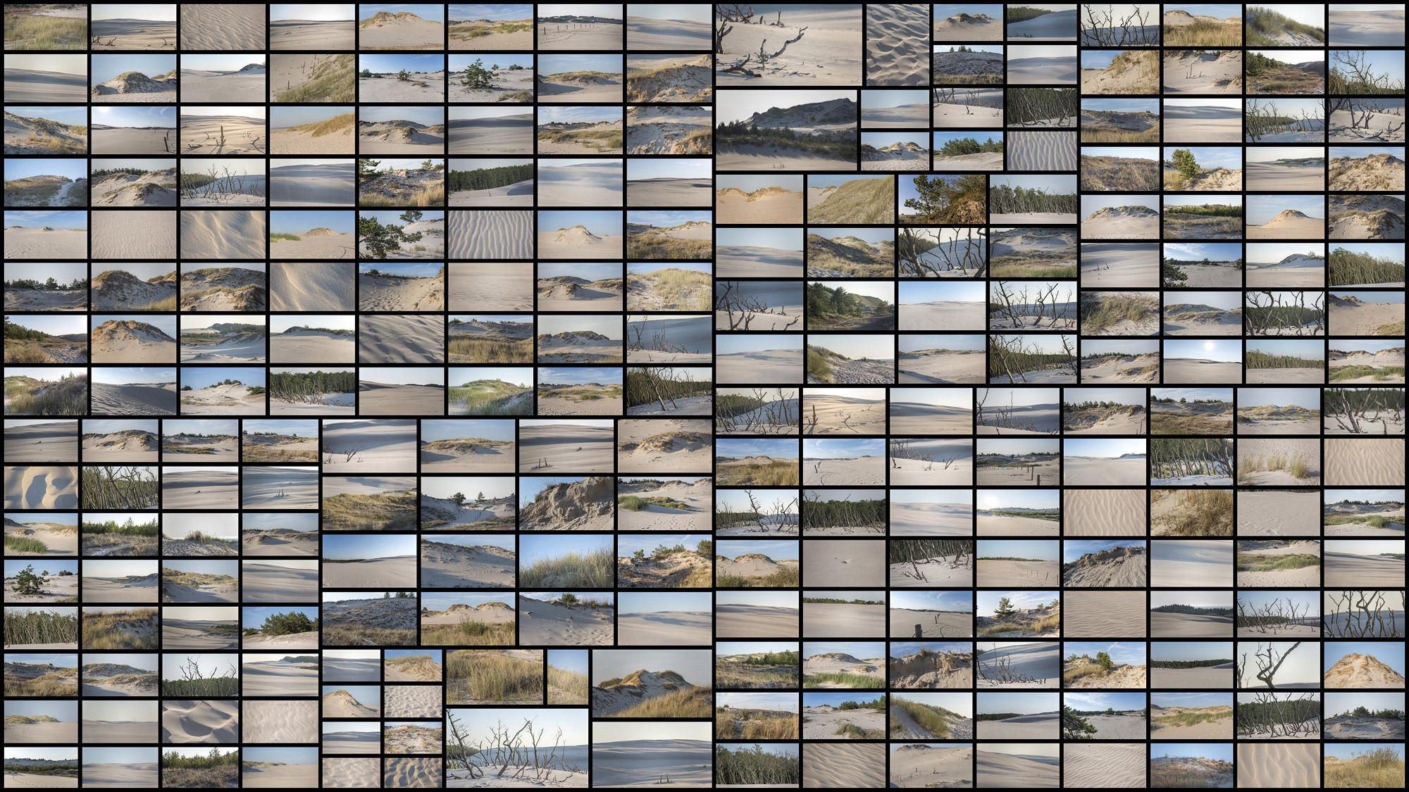 Coastal-Dunes.jpg