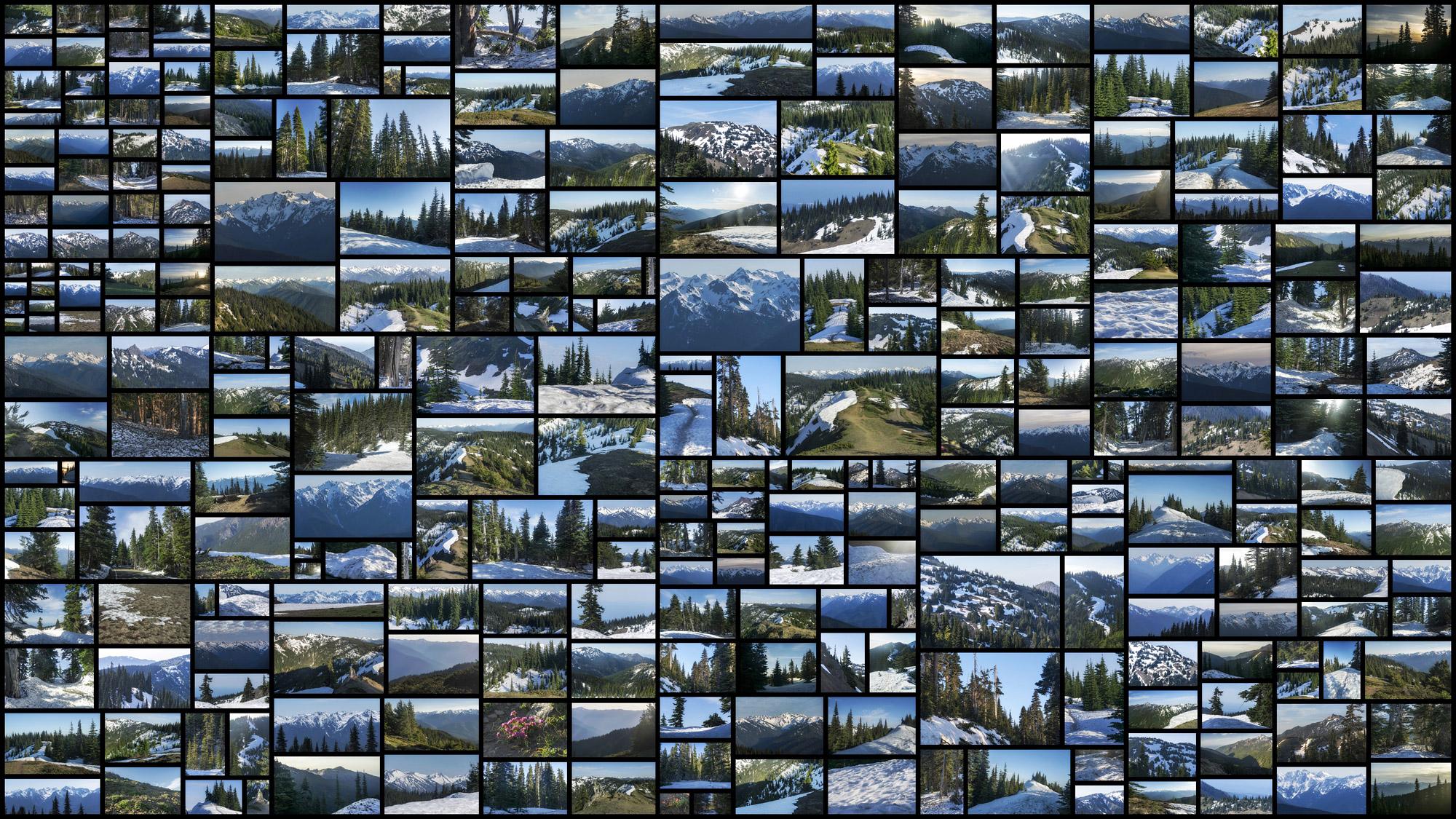 Pinewood-Mountains.jpg