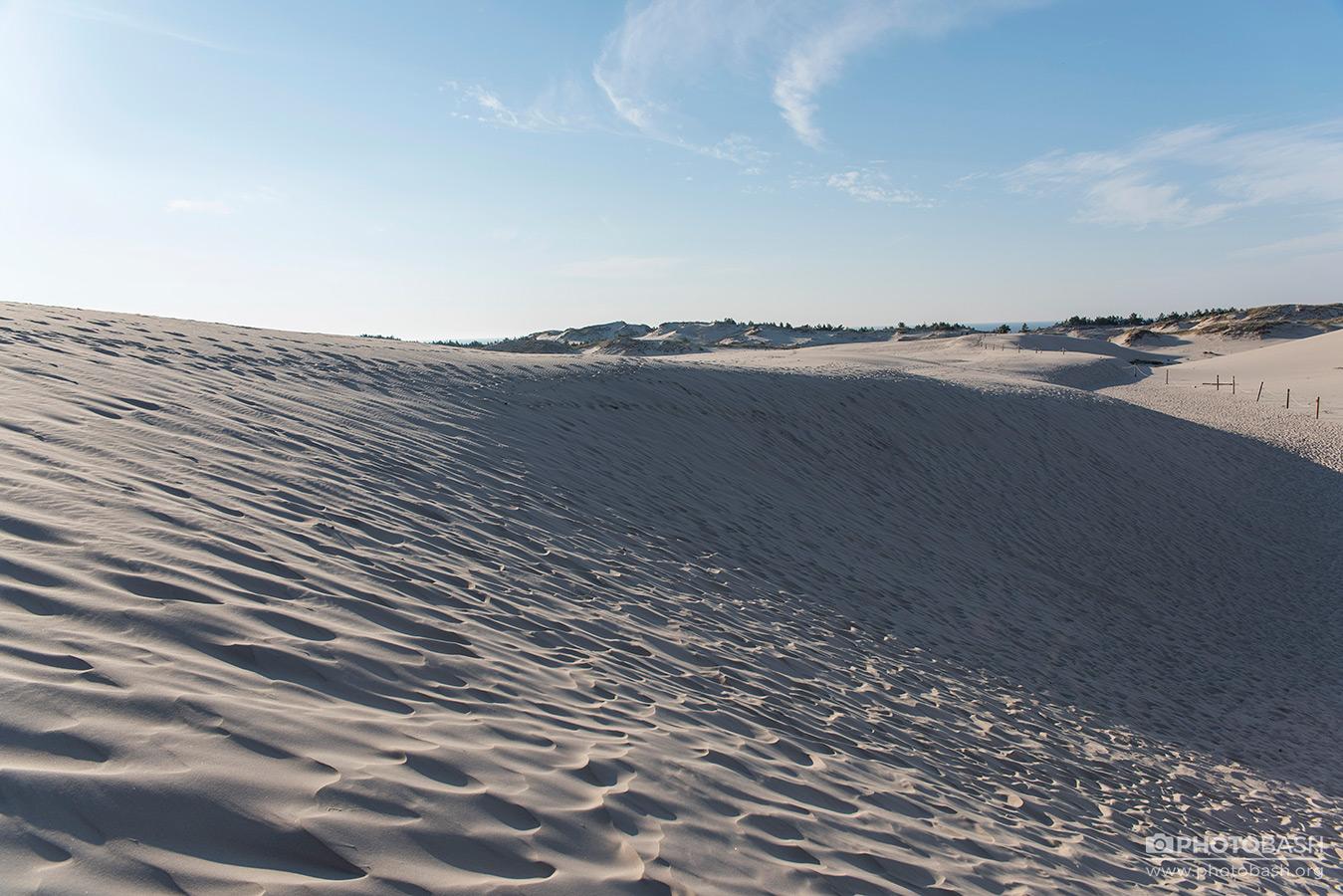 Coastal-Dunes-Beach-Landscape.jpg