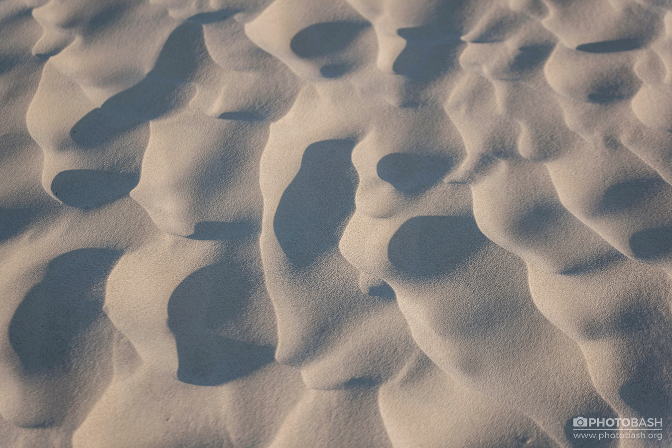 Coastal-Dunes-Beach-Sand-Texture.jpg