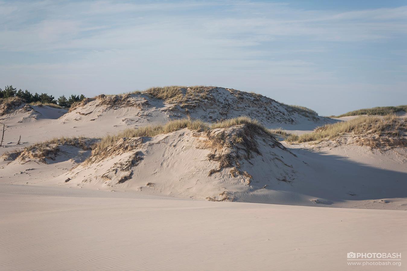 Coastal-Dunes-Beach-Shoreline.jpg