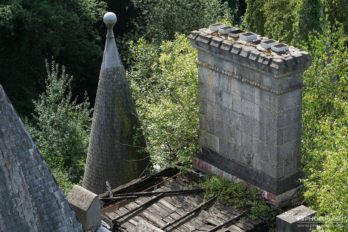 Overgrown-Castle-Rooftop-Chimney.jpg
