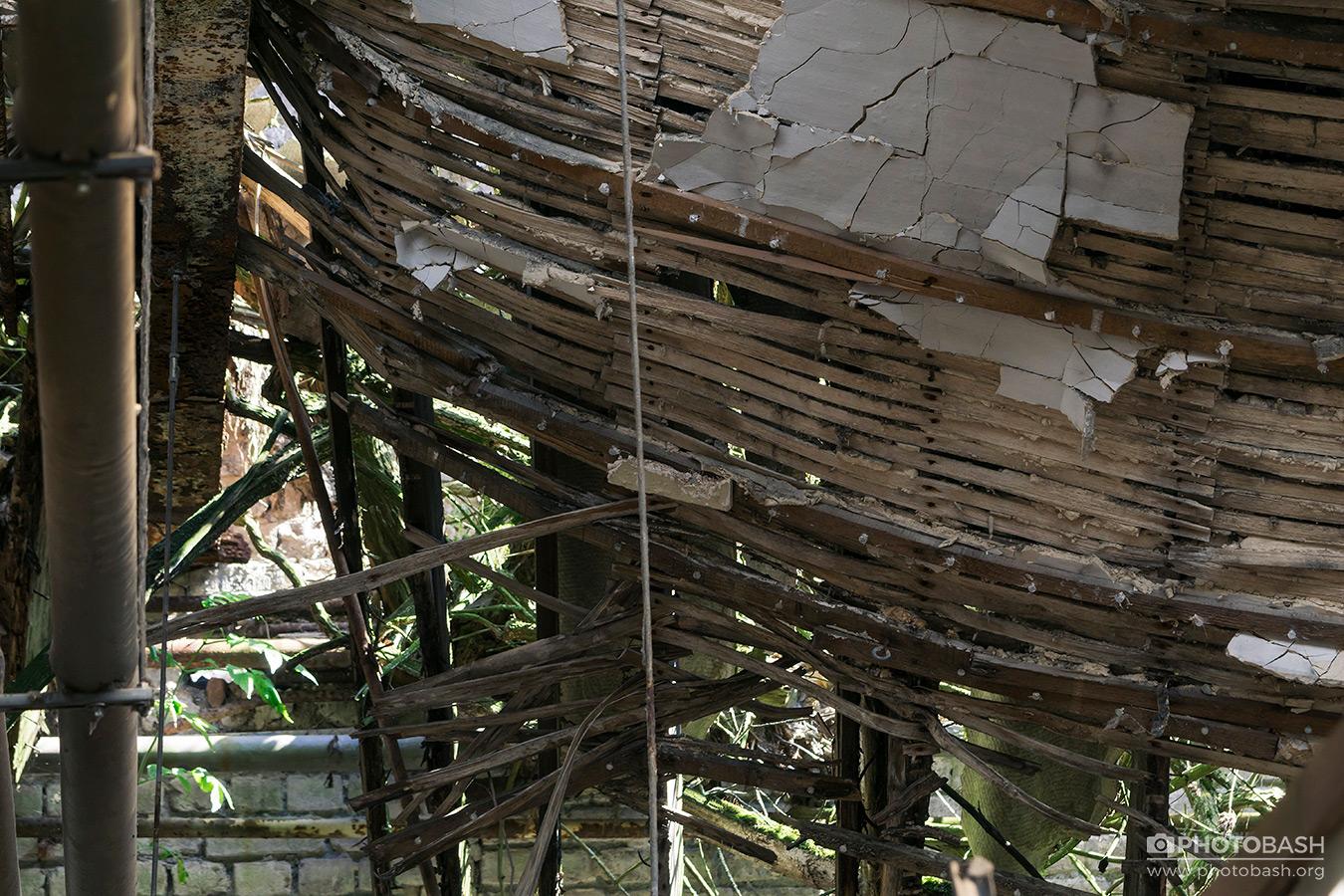 Overgrown-Factory-Collapsed-Ceiling.jpg