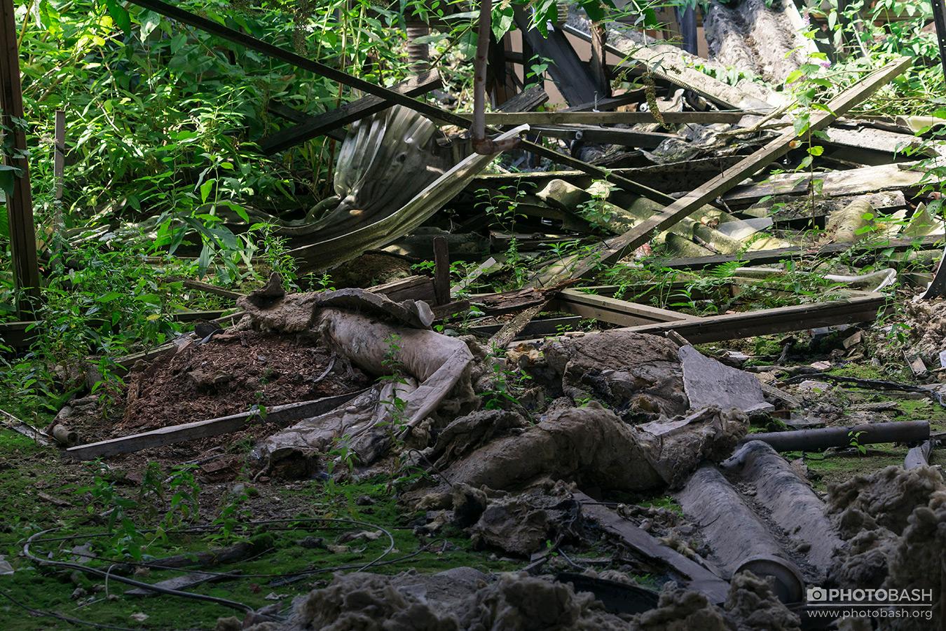 Overgrown-Factory-Debris-Rubble.jpg