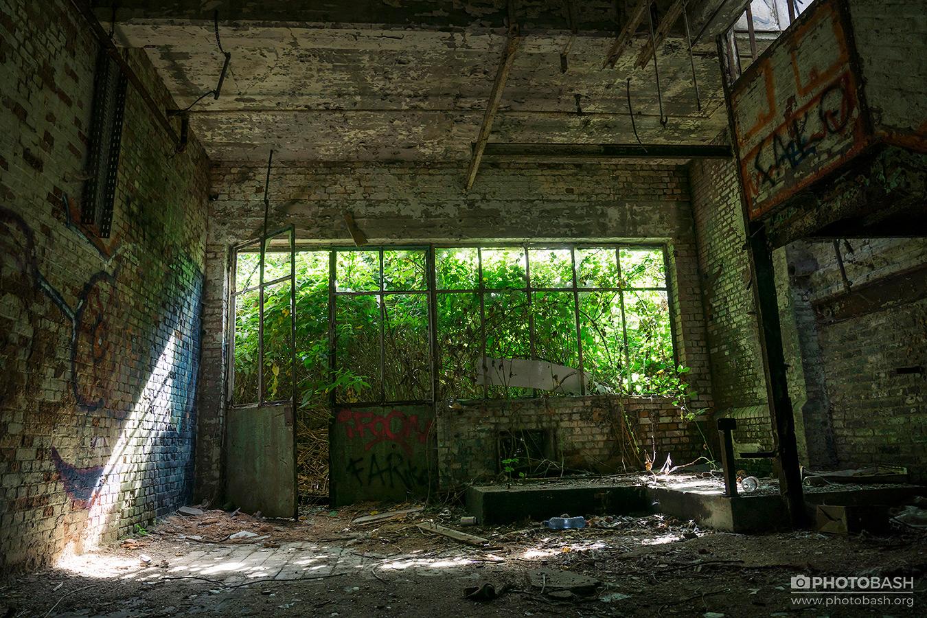 Overgrown-Factory-Derelict-Room.jpg