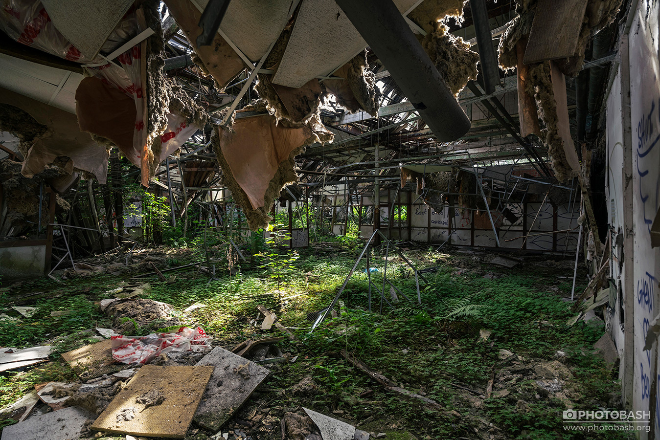Overgrown-Factory-The-Last-Of-Us.jpg