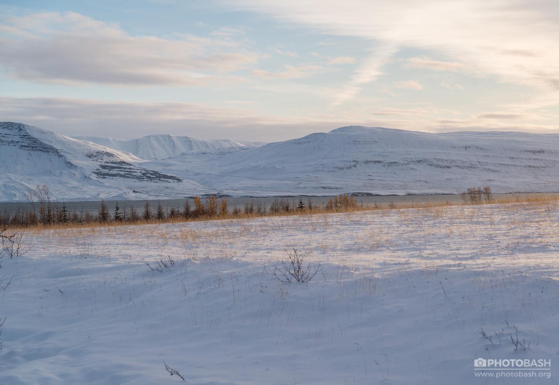 Snowy-Landscapes-Winter-Fields.jpg