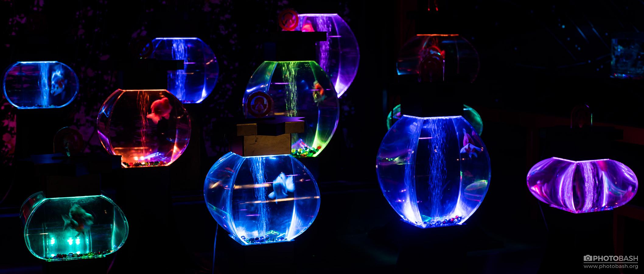LED-Illumination-Magic-Aquarium.jpg