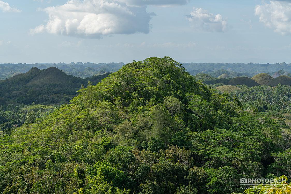 Tropical-Hills-Aerial.jpg