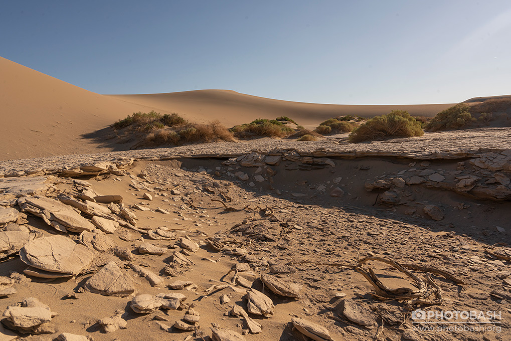 Desert-Dunes-Arid.jpg