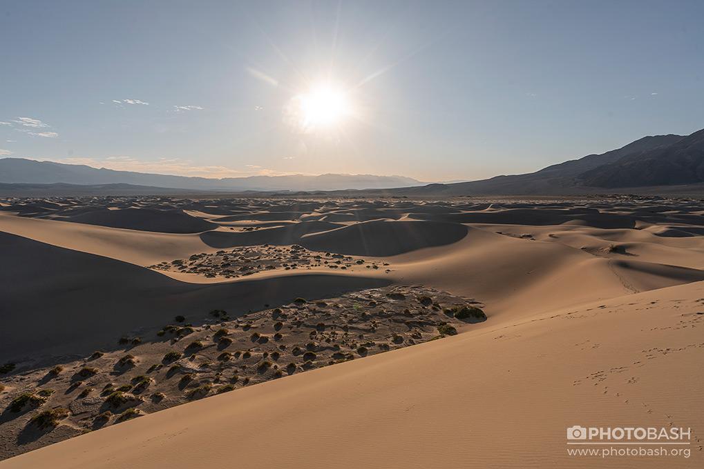 Desert-Dunes-Sahara.jpg