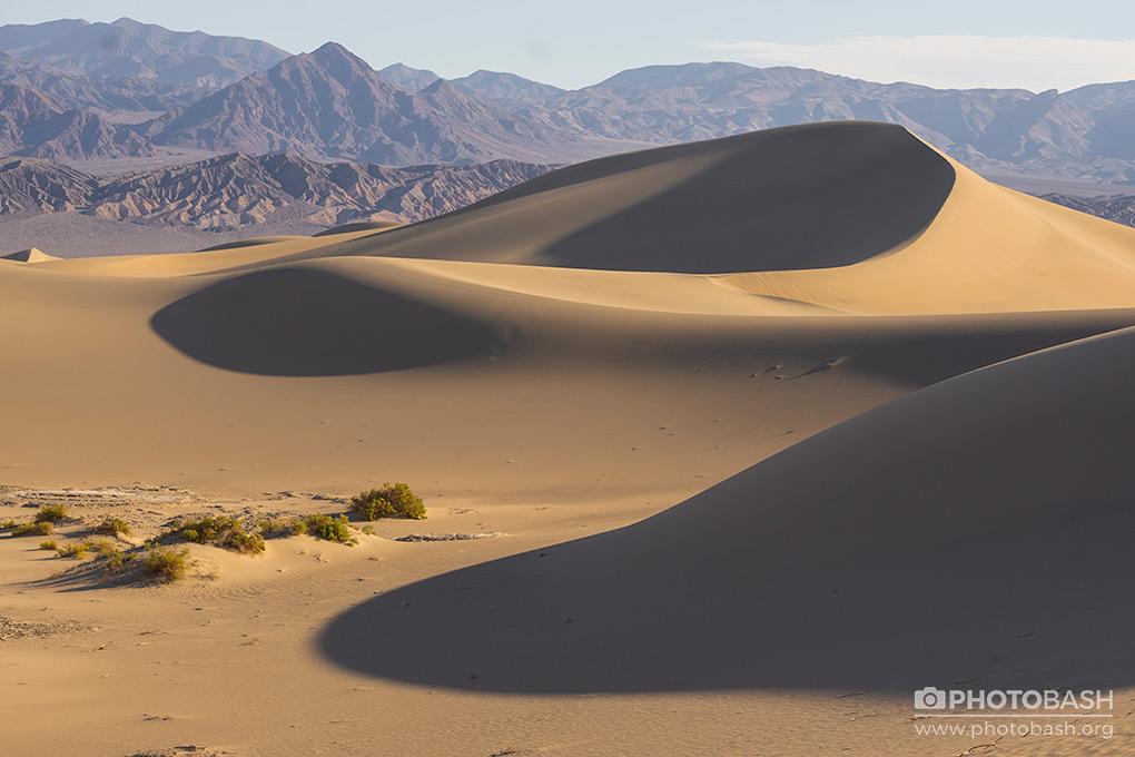 Desert-Dunes-Sand-Environment.jpg