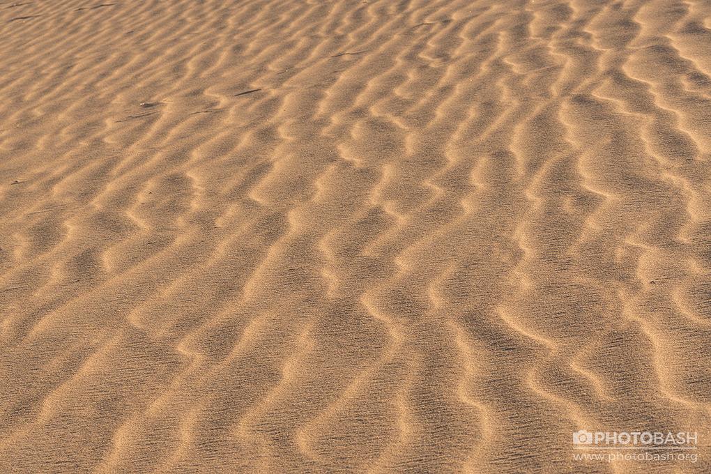 Desert-Dunes-Sand-Texture.jpg