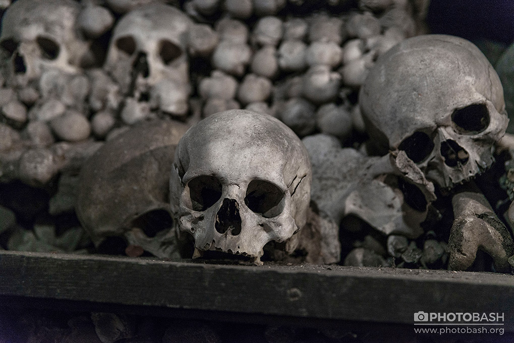 Bone-Crypt-Skull.jpg