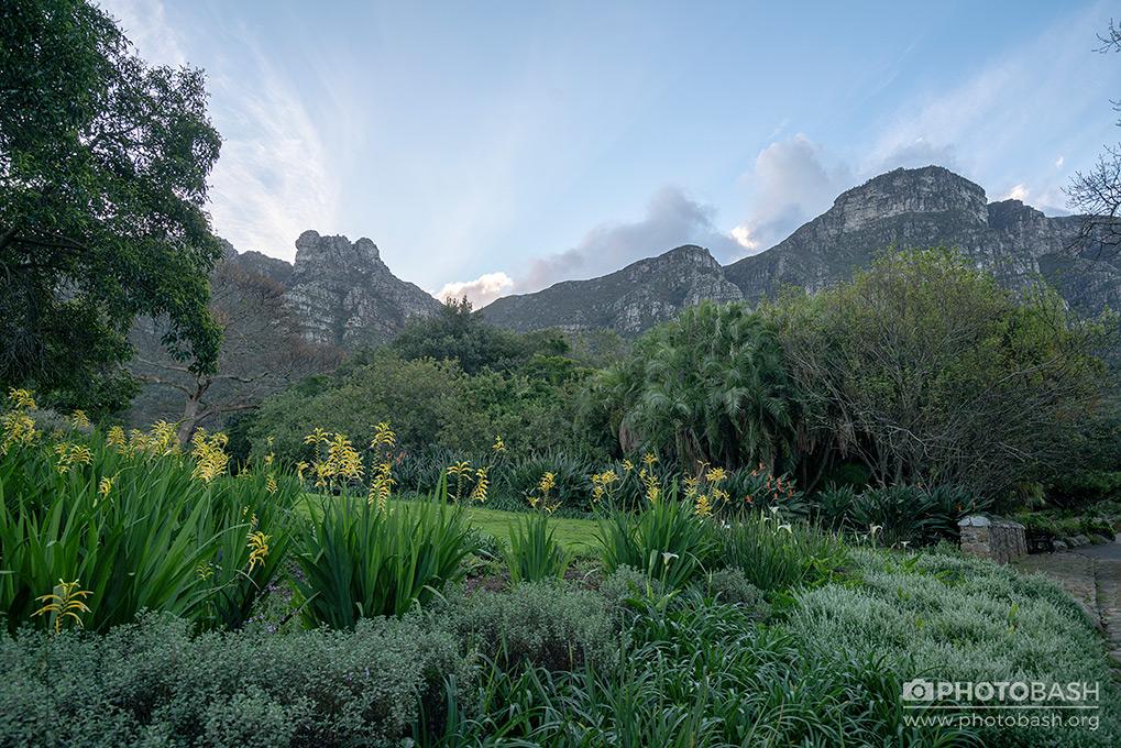 Prehistoric-Garden-South-Africa-Park.jpg
