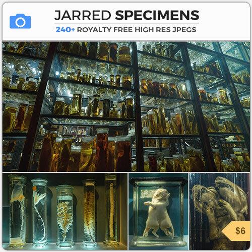 Jarred Specimens Horror Lab Creature Monster Genetic Experiment Creepy